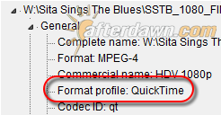 MediaInfo container details for HDV video in QuickTime container - AfterDawn.com