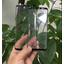 Vuotokuva tarjoaa uuden näkymän mahdollisesta Galaxy S8:n etupaneelista